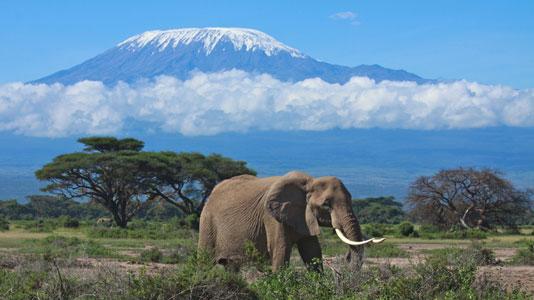 Reiseziele In Afrika Auf Dumont Reise