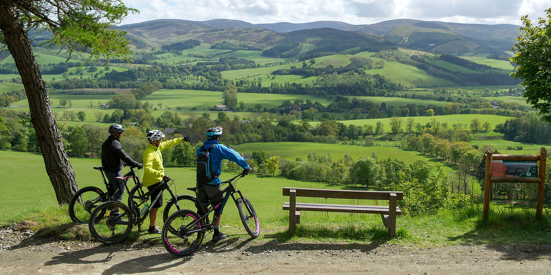 Glentress Forest, Scottish Borders ©VisitScotland/Ian Rutherford