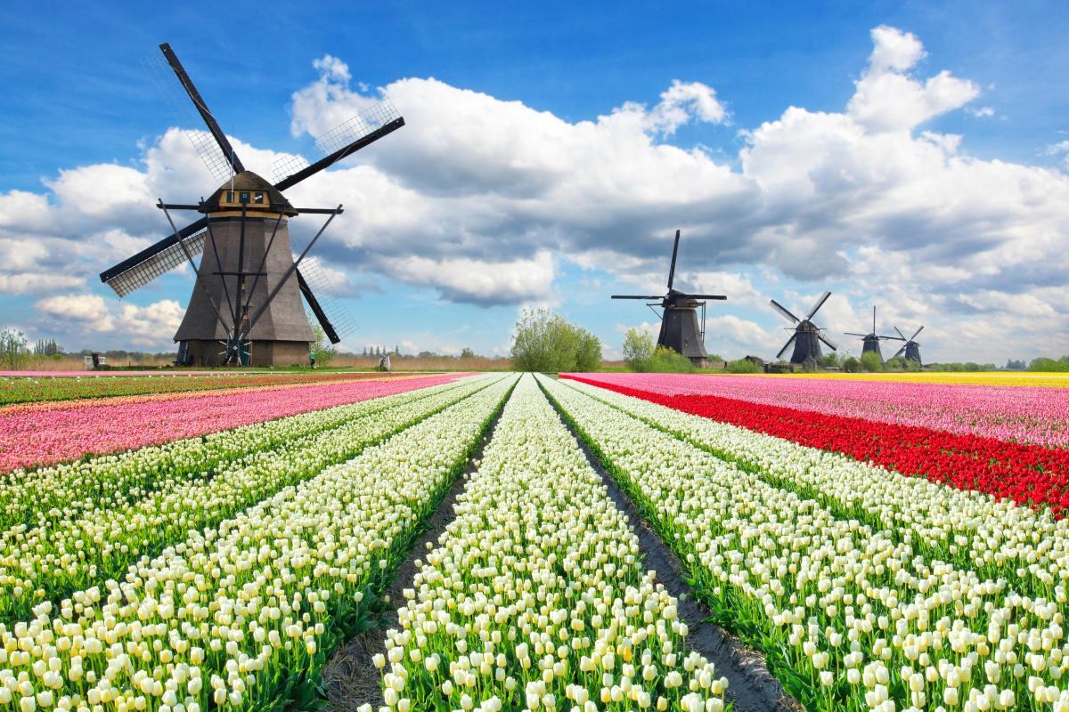 Niederlande Holland Gibt Es Nicht Mehr